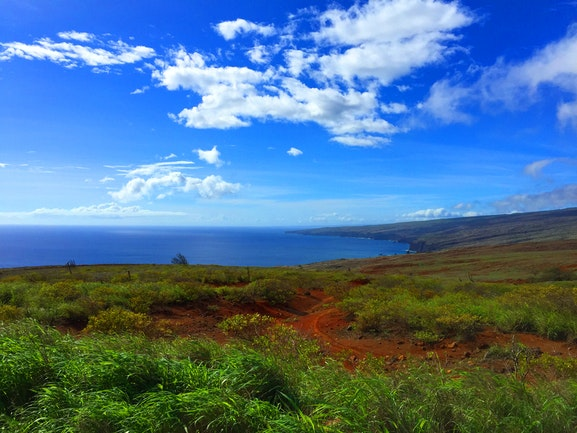 Search and view Lanai real estate for sale.  Our listings are updated in real time, giving our customers a clear advantage in the Lanai home buyers market!