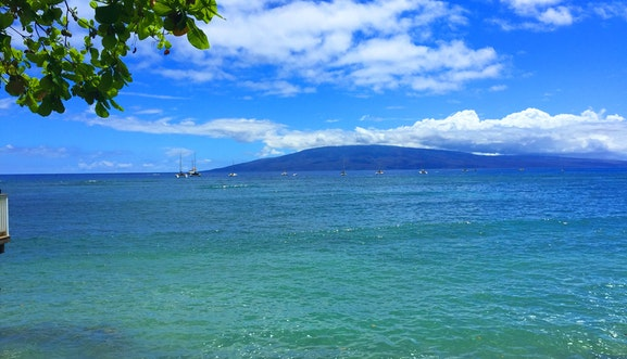 Search and view Maui real estate for sale.  Our listings are updated in real time, giving our customers a clear advantage in the Maui home buyers market!