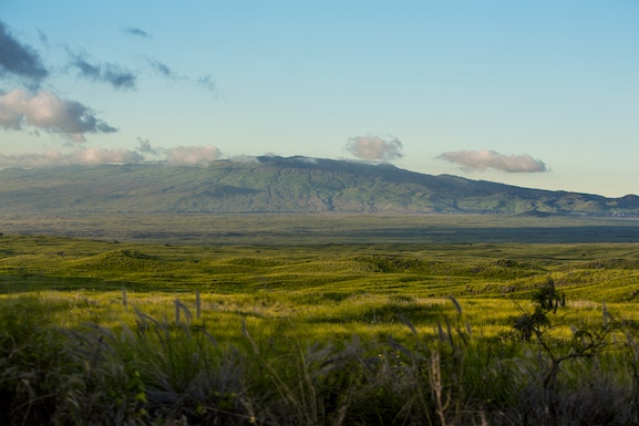 Search and view North Kohala real estate for sale.  Our listings are updated in real time, giving our customers a clear advantage in the North Kohala home buyers market!