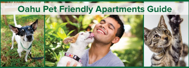 oahu pet friendly condo guide locationsour free pet friendly apartment guide will help you find the perfect condo for you and your best friend(s)